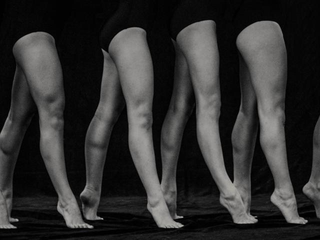 South legs